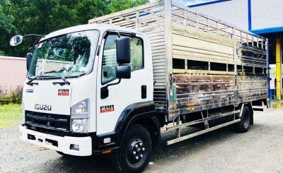 Xe tải Isuzu FRR 650 Cần Thơ (tải 6.5 tấn - có trả góp)